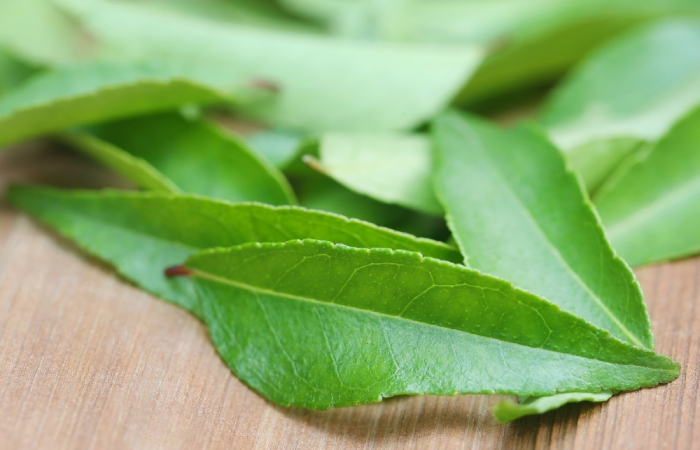 image result for curry leaf