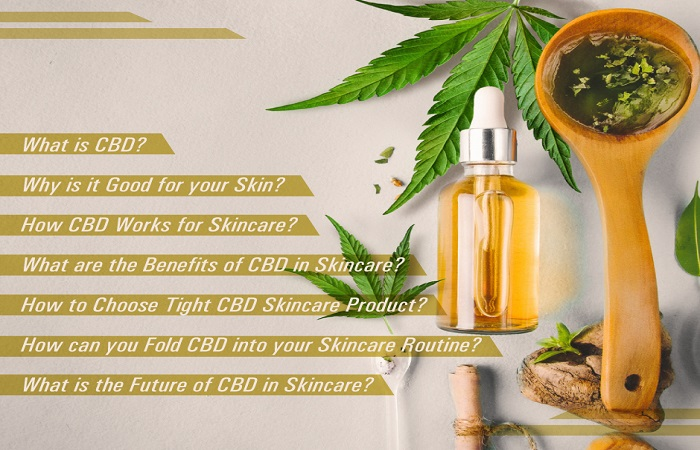 Everything-you-Need-to-Know-About-CBD-for-Skincare_Part2